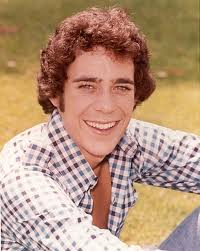 barry williams show