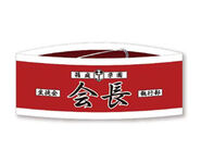 Student Council President Armband