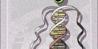 Fail Gene