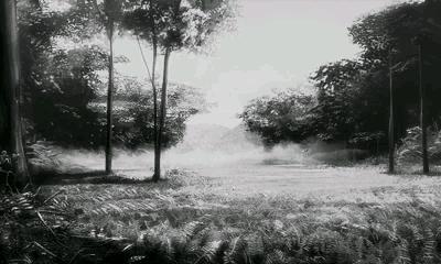 File:Monochrome Forest SMTIV.png