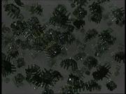 Nanosonde - Scorpion II.png