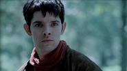 Merlin very surprised