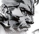 Metal Gear Wiki