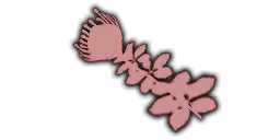 File:IconUI AfricanPeach TPP.png