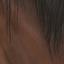 Dhorse hair2