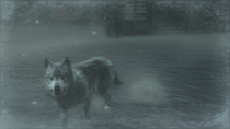 Wolf Pic 4 (Metal Gear Solid 4)