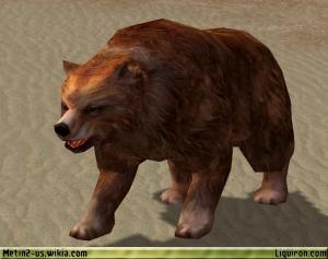 File:Brown Bear 1.jpg