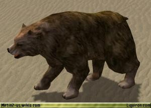 File:Bear 3.jpg