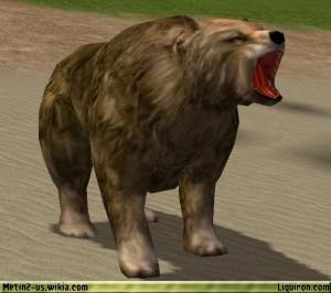 File:Bear 2.jpg