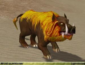 File:Hungry Wild Boar 2.jpg