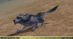 File:Blue Wolf 2.jpg