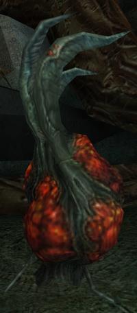 Torvus Bearerpod