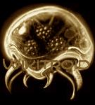 File:Wikitroid Metroid Logo (sepia).png