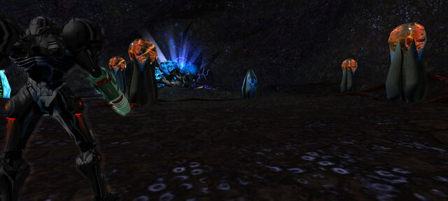 File:Samus enters Metroid Prime Lair Dolphin HD.jpg