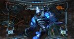Fighting Omega Pirate.jpg