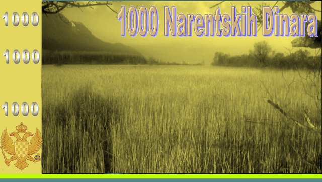 File:1000NAD.png