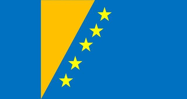 File:Projekt flagi.jpg