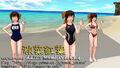 Sosou MomijiAkina V24 01.jpg