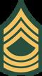 100px-US Army E-8 MSG svg