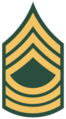 100px-US Army E-8 MSG svg.png