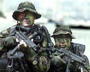 Seals With mp5