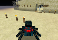 A Cave Spider Near the Military Base