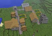 NPC Village Overhead