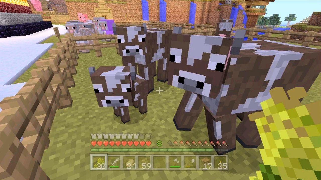 Cow Pen Minecraft a Pen of Cows