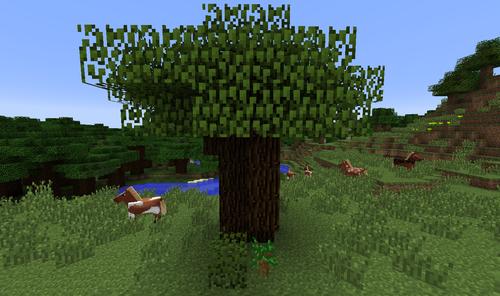 how to make a tree grow fasr minecraft pe