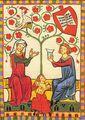 Codex Manesse Hochzeitsgewandung 01.JPG
