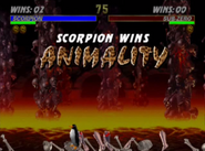 Scorpion Penguin Animality