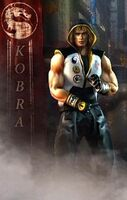 Kobra the Street Fighter