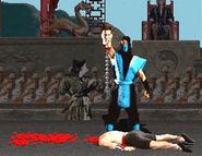 Subzero mk fatality