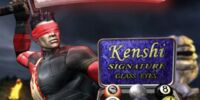 Kenshi Signature Glass Eyes