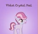 Violet Crystal Foal