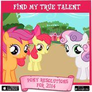 Pony Resolutions 2014 CMC