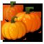 File:Pumpkins.png
