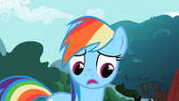 Rainbow Dash 'what to do' S2E07