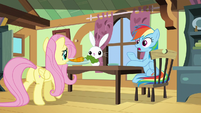 "Rainbow ""where's Zeph gonna go now?"" S6E11"