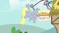 Derpy crashes into a wooden sign S6E6.png