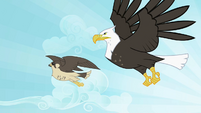 Eagle and falcon flying S2E07