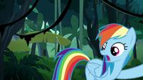 "Rainbow Dash ""you said go over him!"" S6E13"