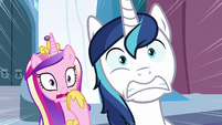Cadance and Shining Armor shocked S6E2
