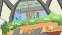 Ponies watching the bunny stampede from indoors S1E04
