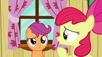"""Apple Bloom """"about what Crusaders can do"""" S6E19"""