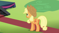 Applejack watching the meet-and-greet S5E24