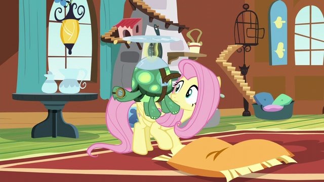 File:Fluttershy sees Tank sleeping while flying S5E5.png