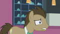 "Dr. Hooves ""Straight?"" S5E9.png"