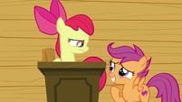 Apple Bloom looking serious at Scootaloo S6E4