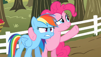 "Pinkie Pie ""It was like a moment in time you can never get back"" S2E15"
